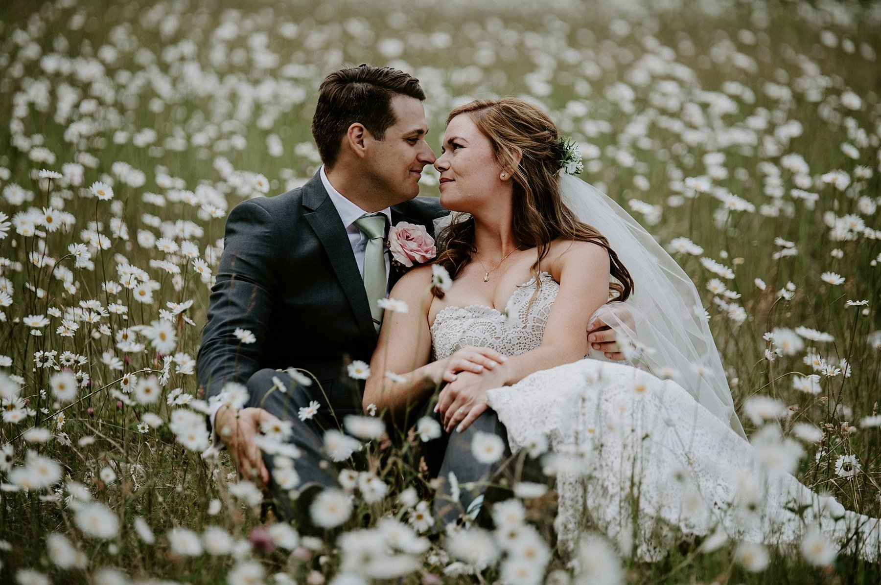 field of daisies wedding photos